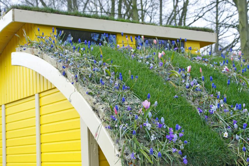175337-850x566-carport-roof-garden