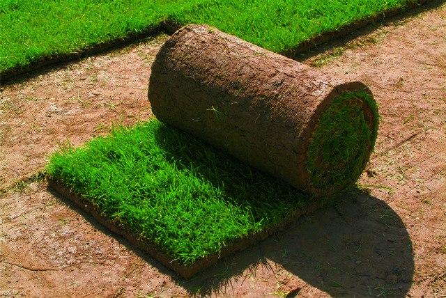 Как сделать рулонный газон своими руками видео