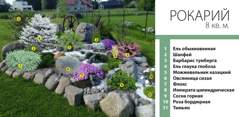 Схема рокария со списком растений 66